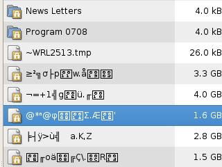 Screenshot of Corrupt USB Key Filesystem